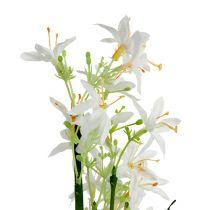 Gräsbuske med blommor grön, vit 3st
