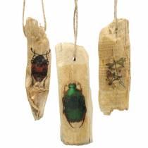 Dekorativt hängande insektsved 9-13cm 36p