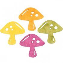 Spridda svampar, höstdekorationer, lyckliga svampar att dekorera apelsin, gul, grön, rosa H3.5 / 4cm B4 / 3cm 72st