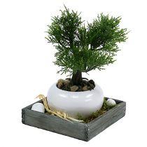 Träbricka grå 14 cm x 14 cm x 3 cm