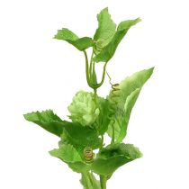 Hopgren 70cm grön 2st