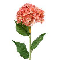 Hortensiarosa 80cm 1st