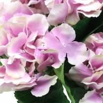 Silkeblommor hortensia i en kruka lila 35cm