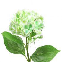Hortensia konstgjord grön, vit 68cm