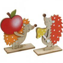 Höstfigur, igelkott med äpple och svamp, trädekoration orange / röd H24 / 23,5cm uppsättning med 2