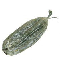 Loofah fruktgrön 14 cm 10st