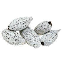 Kakaofrukter tvättade vita 15st