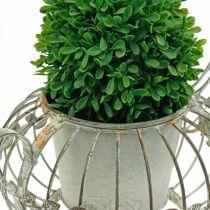 Planter, dekorativ kaffekanna, metallkruka för plantering L15,5cm Ø11,8cm