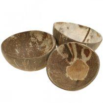Kokosnöt dekorationsskål naturpolerad 6st