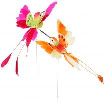 Kolibri på kabeln för att ansluta rosa, orange 17 cm 6st