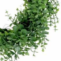 Krans eukalyptusgrön Ø36cm