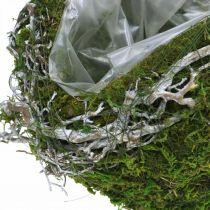 Gravdekoration kulvinstockar mossgrön, vit tvättad Ø20cm