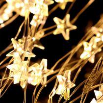 LED-ljusbuntstjärna för utsidan 320mm 1m silver / varmvit