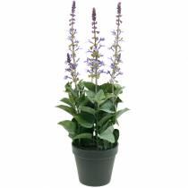 Dekorativ växt lavendel, medelhavs lavendel kruka, konstgjord blomma violett