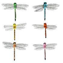 Dragonflies på klippet 6,5 cm x 8,5 cm 12 st