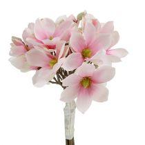Magnolia bunt rosa 40cm 5st