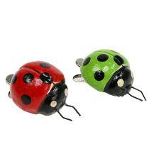 Nyckelpiga med klämma 4,5 cm röd, grön 6st