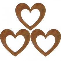 Hjärta rost trädgård dekoration metall hjärta 10cm 12st