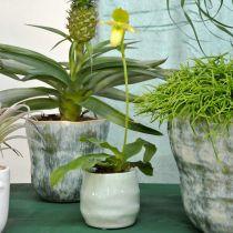 Mini planter, keramik kärl, dekorativ lykta, växtkruka vågmönster Ø8cm 6st