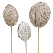Mintolla boll på stick mix vit tvättad 6st