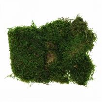 Dekorativ mossa för hantverk grönt, mörkgrönt 100g
