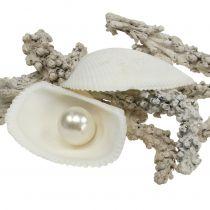 Skalblandning med pärla och vitt trä 200g