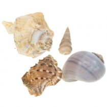 Shell mix naturligt 500g
