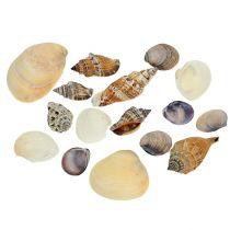 Shell mix naturligt 400g