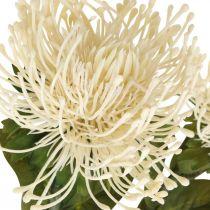 Pincushion konstgjorda blommor exotisk leukospermumkräm 73cm 3st