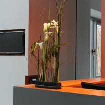 OASIS® Black Table Deco Medi blommig skum 4st