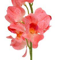 Orchid Mokara lax 50cm 6st
