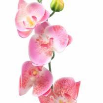 Orkidé phalaenopsis konstgjord rosa 60cm