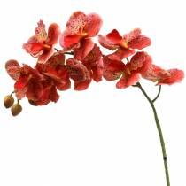 Konstgjord orkidé Phaelaenopsis Röd, Orange H81cm