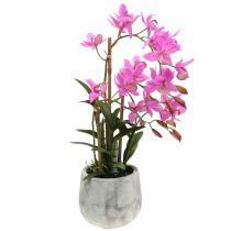 Orkidé i potten lila H55cm