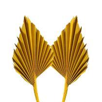 Palmspear mini gul 100st