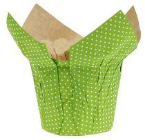 Papperskärl Ø10cm H8cm grön 8st