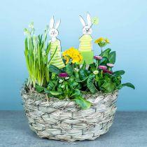 Planter gjord av hö, dekorativ korg, växtkorg, oval blommakorg, uppsättning 3