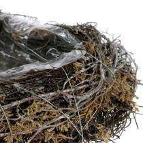 Växthjärta av vinstockar och naturlig mossa 20 cm x 14 cm