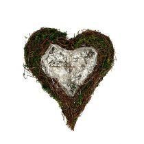 Plantera hjärtvin, mossa 22cm x 25cm H7cm