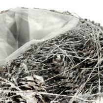 Växthjärta gjord av kottar 17 cm x21 cm vit 2st