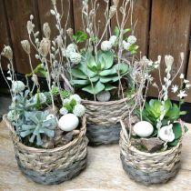 Växtkorg, vävd korg för plantering, rund blommakorg naturlig, grå Ø29 / 23,5 / 18 cm, uppsättning 3