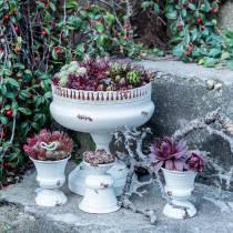 Planting Cup Chalice Antik kräm Ø20cm H20cm 1p