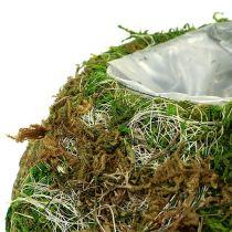 Plantskål mossskål Ø18cm 2st