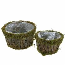 Planteringsskål Mossa/bark Runt Ø15/20cm Uppsättning av 2