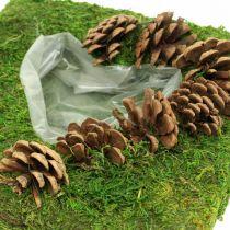 Växtkudde hjärtmossa och kottar fyrkantiga 25 × 25cm