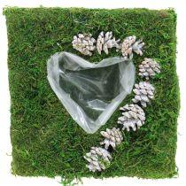 Växtkudde hjärtmossa och kottar, tvättad vit 25 × 25cm
