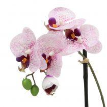 Konstgjord phalaenopsis lila-vit i skål H38cm