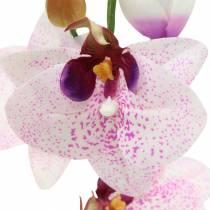 Konstgjord orkidé phaleanopsis vit, lila 43 cm
