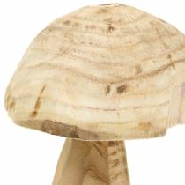 Svamp Paulownia trä Ø16cm H18cm