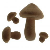 Flockade svampar bruna 12st
